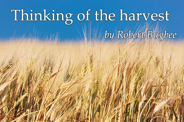 Thinking of the harvest