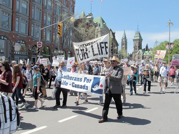 Lutherans take part in the 2015 March for Life in Ottawa.