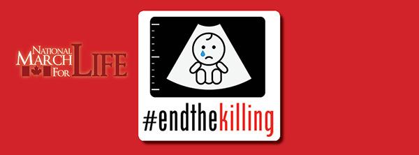 EndtheKilling-banner