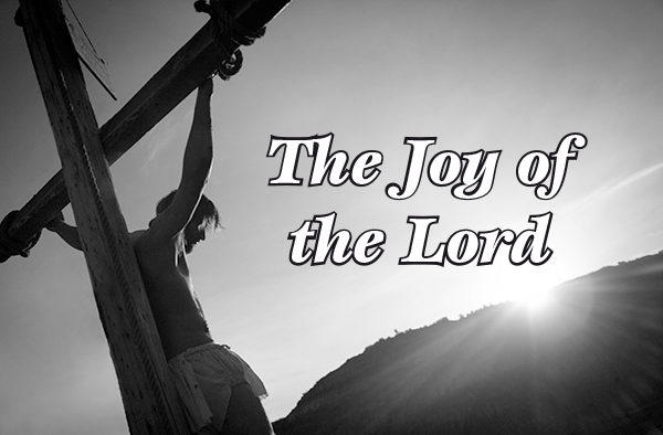 joy-of-the-lord-banner